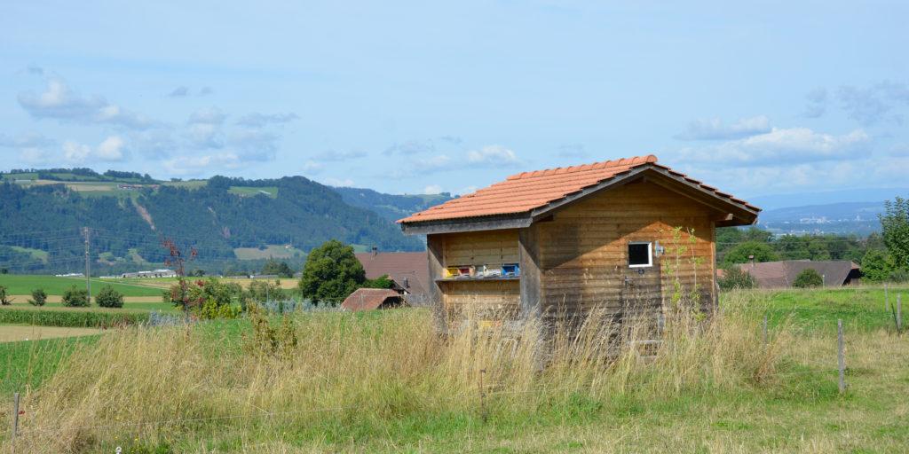 Das Bienenhaus von Anna Ryser liegt in ländlicher Umgebung.