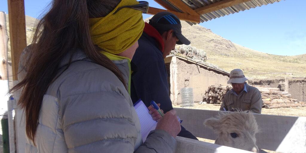 Einsatz in Peru
