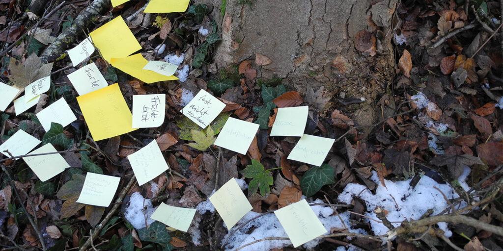 Kreativer Waldspaziergang